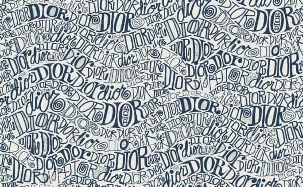 Dior muốn đánh gục cả thế giới với dòng thời trang nam đầy nhục cảm 2
