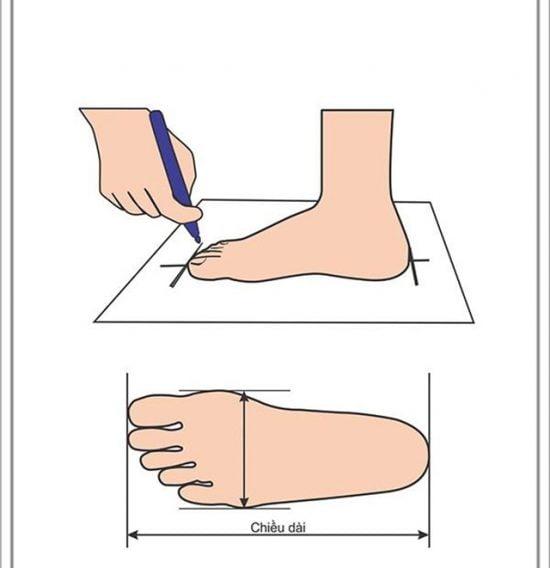 Cách đo chiều dài bàn chân